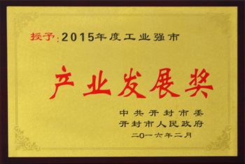 2015产业发展奖